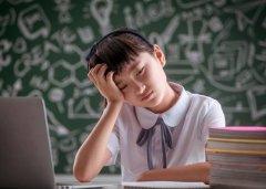 侨外海外教育:想要不输在起跑线,孩子的职业规划要趁早!